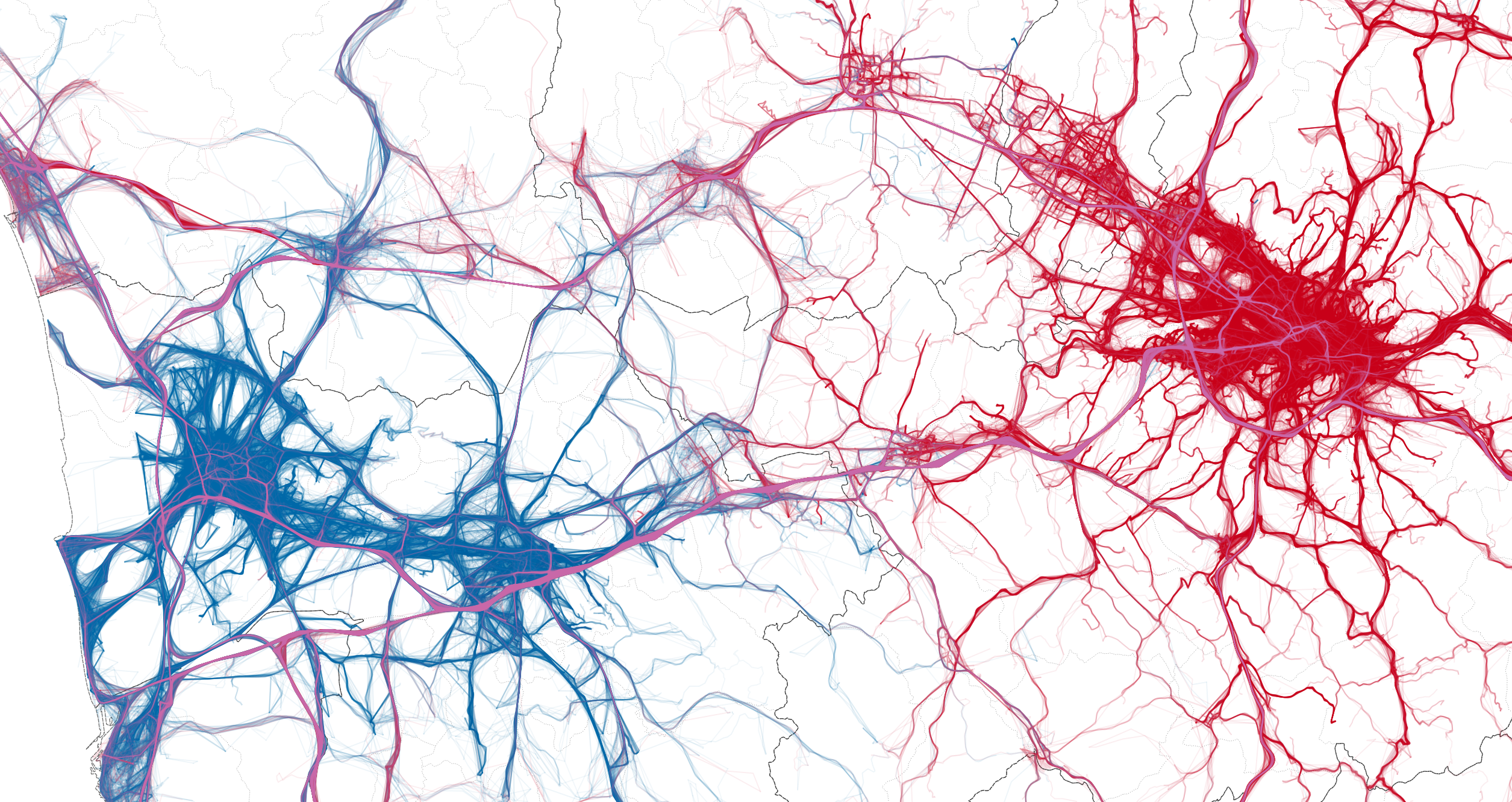 A fragment of the GPS trajectories used in our study, displaying trips originating in the metropolitan areas of Pisa (in blue) and Florence (red). This plain geo-referenced visualization of experimental data reveals the confrontation of two 'competing' metropolitan areas. It also demonstrates the ability of Big Data to portray social complexity.